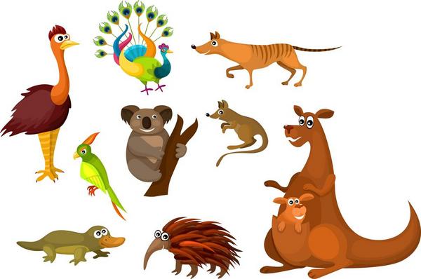 australian animals  nem4a 2014 scanpix